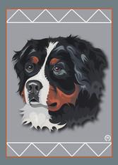 Bernese Mountain Dog Face Note Card