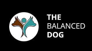 dog training company logo