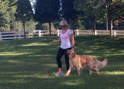 Dog Training Nashville Tennessee, Board and Train customers