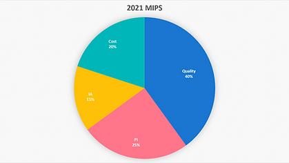 MIPS 2021.png
