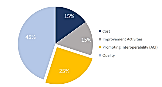 MIPS Pie Chart Quality Focus (2019 Updat