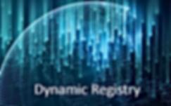 dynamic registry.png