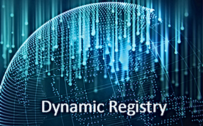 dynamic registry.png