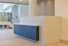 Entrance lobby and reception