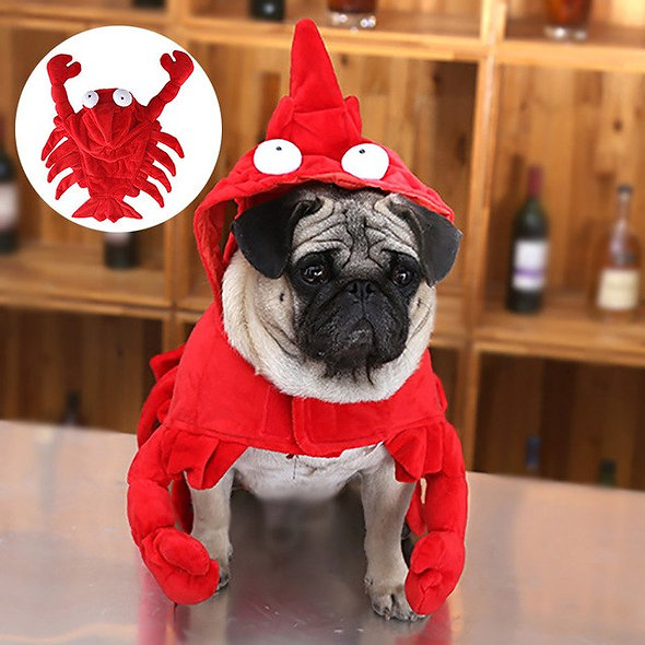 Pet Dog Clothes Christmas Halloween Lobster