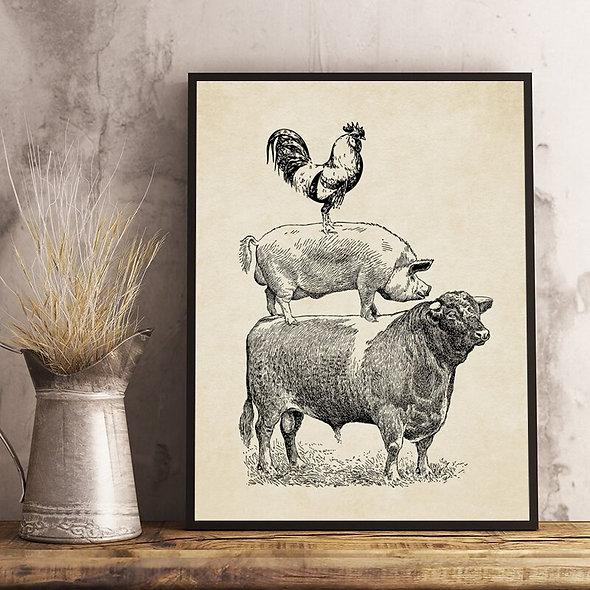 Farm Cow Pig Chicken Vintage Poster