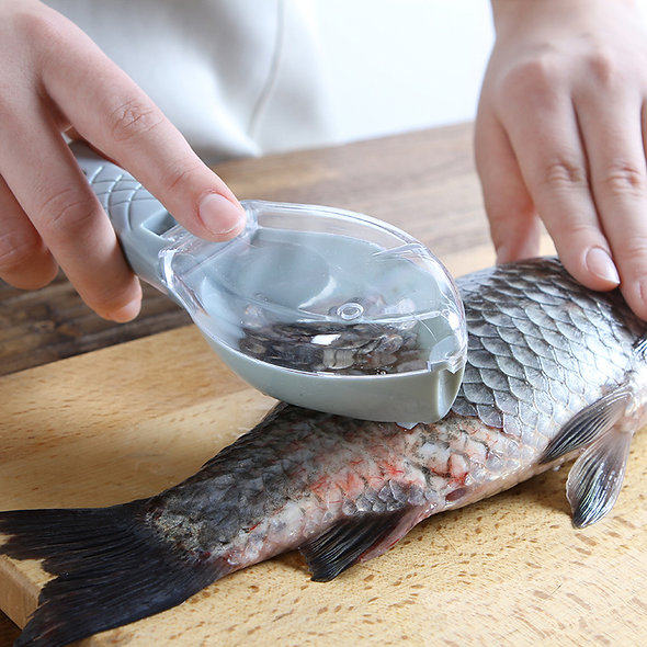 Fish Scale Brush Graters