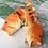 Thumbnail: Funny Fish Slippers