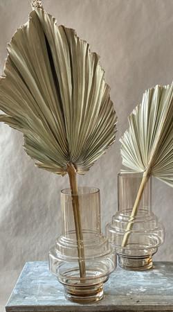 Palmblätter getrocknet