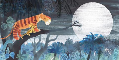 A Tiger's Night