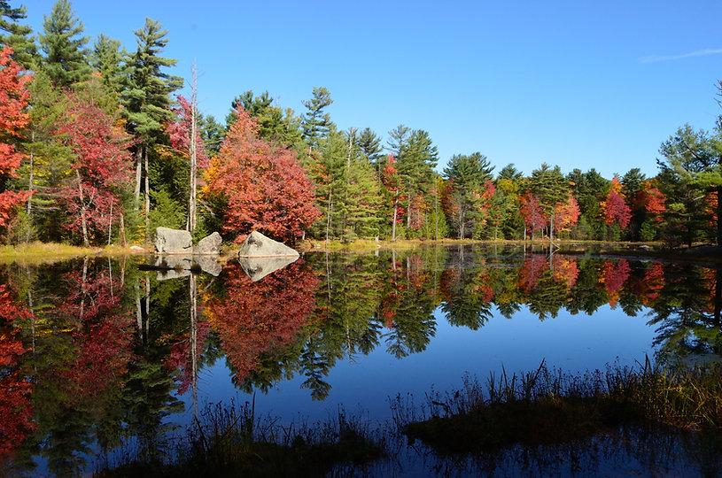 Breathtaking views of Autumn colors refl