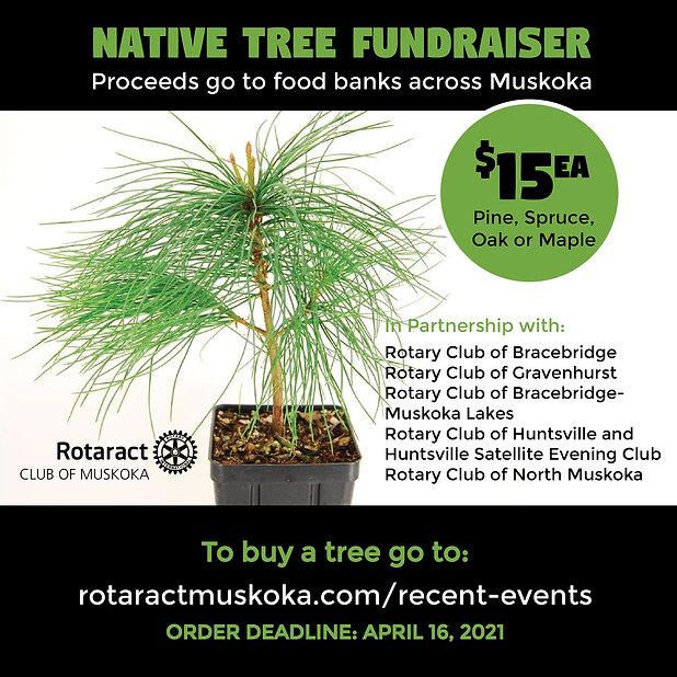 Rotaract Tree Fundraiser-01.jpg