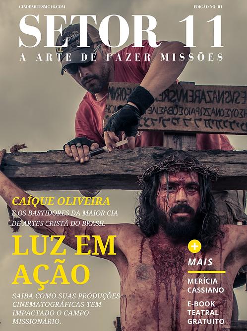 Revista SETOR 11 - Edição 1