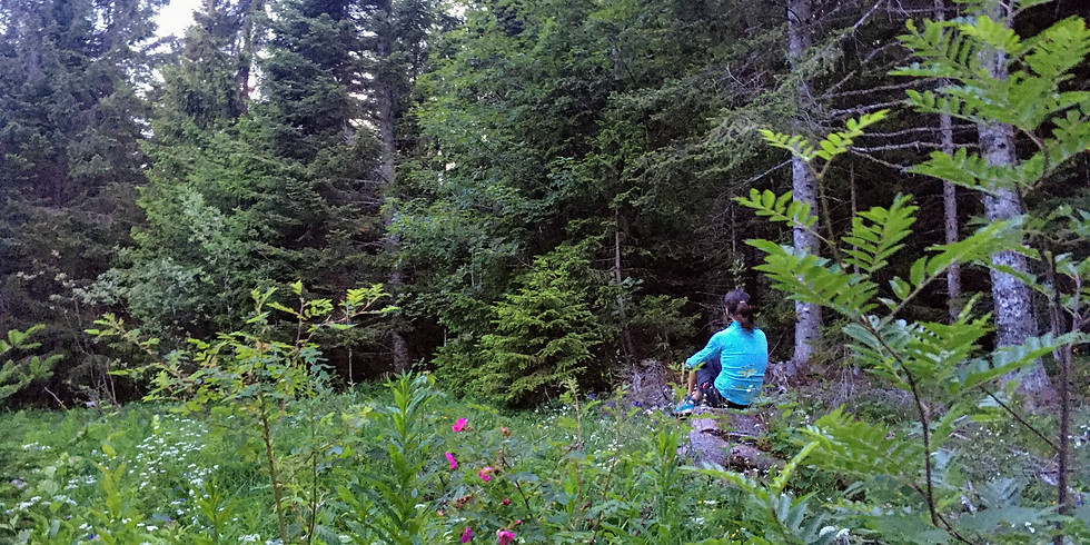 Un temps pour soi en forêt