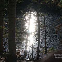 No. 1460 Bear Lake - Rocky Mountain National Park Autumn