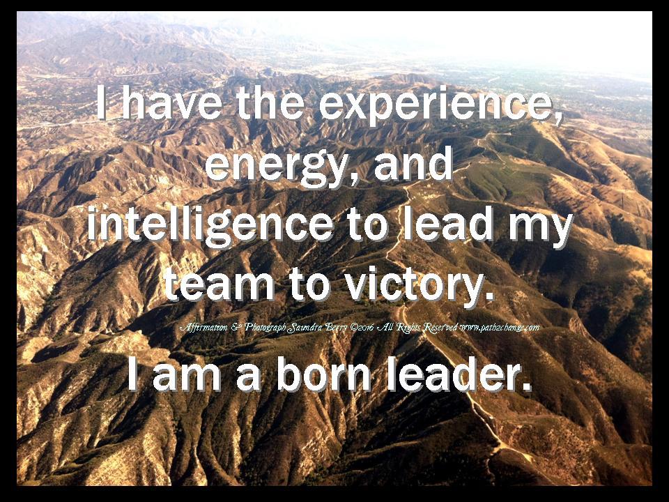 Leadership - SK Berry