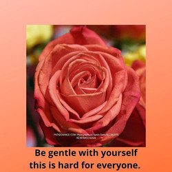 Gentleness - Path2Change.com