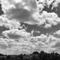 No. 1429 B&W Big Sky