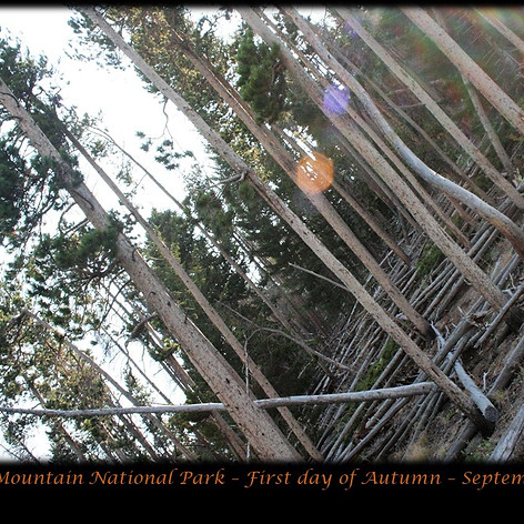 No. 1454 First Day of Autumn in the Rockies 2018