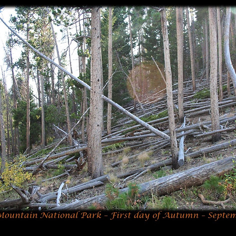 No. 1452 First Day of Autumn in the Rockies 2018