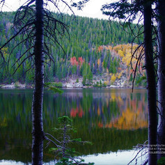 No. 1459 Bear Lake - Rocky Mountain National Park Autumn