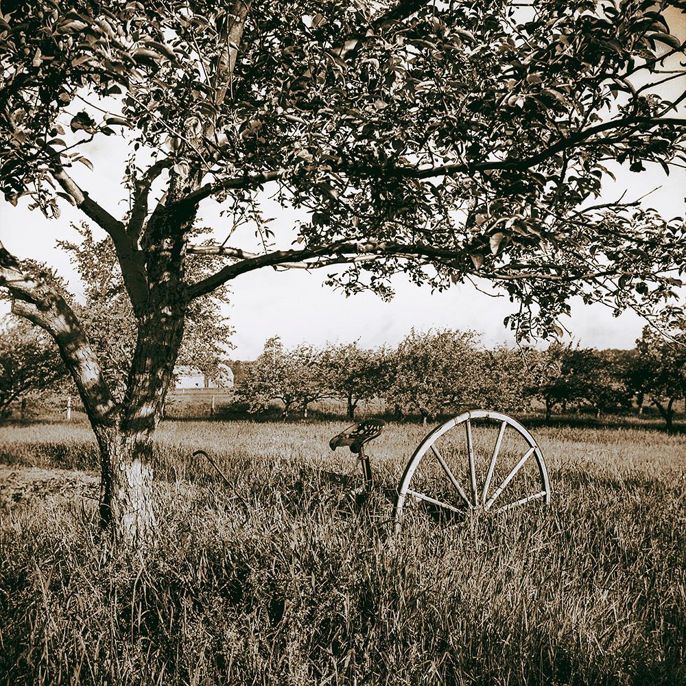 À l'abandon, photo de Raymond Lewis, 1940