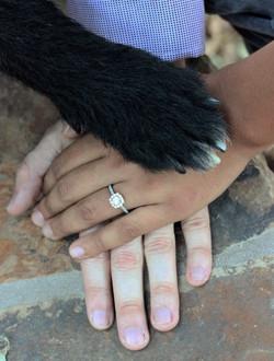 All Of Us | Alas Wedding Photography