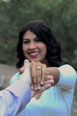 The Proposal | Alas Wedding Photogra
