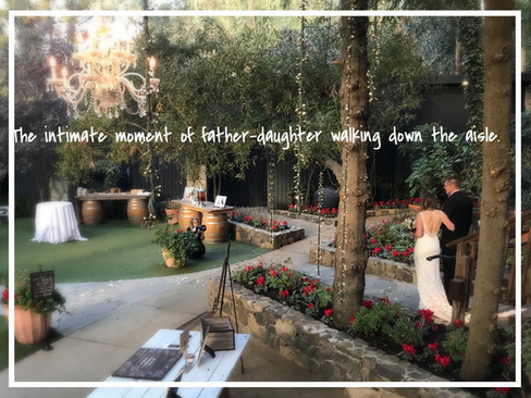 intimate moment of father-daughter walking down the aisle