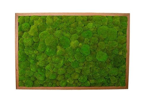 Mechový obraz v dubovém rámu - masiv - Spring green