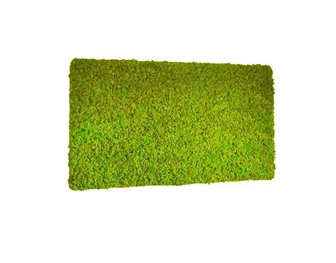 Mechový obraz - Spring green