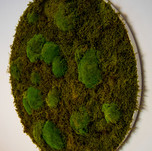 Mechové kolo - Moss green