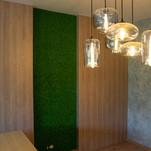 Mechová stěna - jarní zeleň