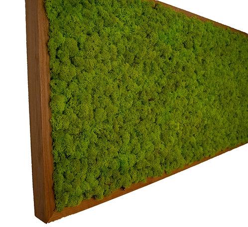 Mechový obraz v masivu, norský sobí mech - spring green