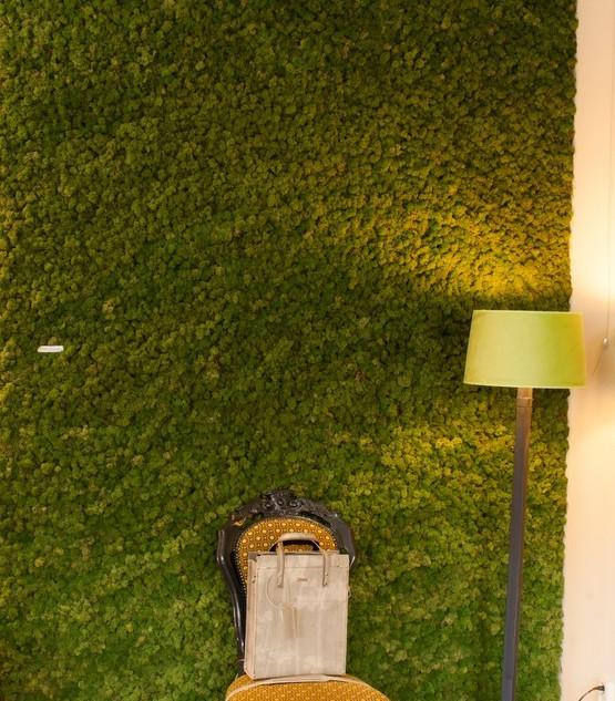 Mechová stěna Moss green