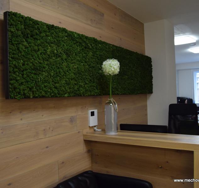 mechový obraz v kovovém rámu - Moss green