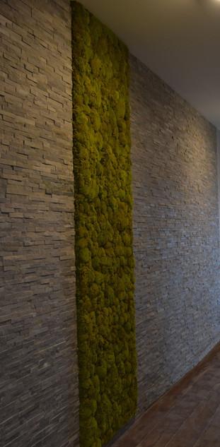 Kopečkový stěna - barva Spring green