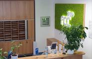 Světelné logo v mechovém obrazu v borovicovém rámu