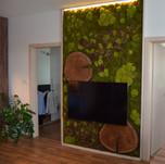 mechová stěna a dřevo.jpg