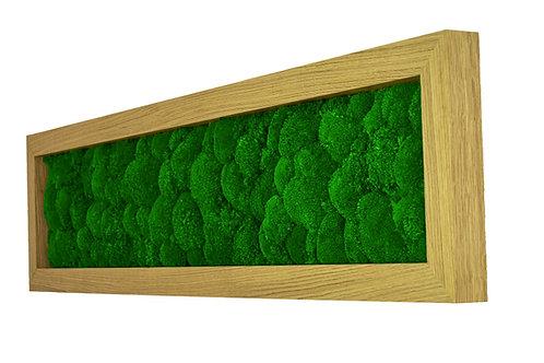 Mechový obraz v dubovém rámu - Lesní tráva