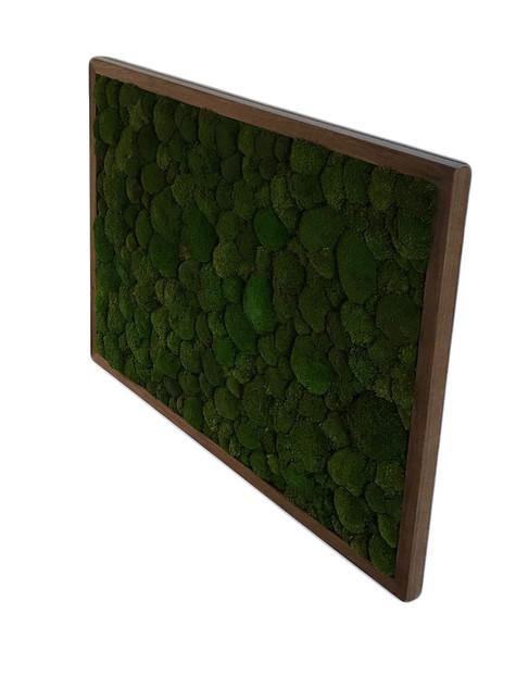 mechový obraz v dubovém rámu - kopeček