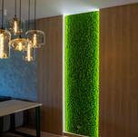 Mechová stěna - jarní tráva