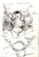 MSC2003_originalSculpt_A_preliminarysket