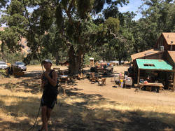 Green Grin Camp 2017