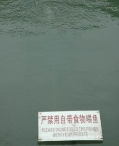 Do not feed private parts to piranhas (Bad Translation)