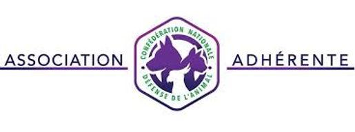 cnda logo.jpg