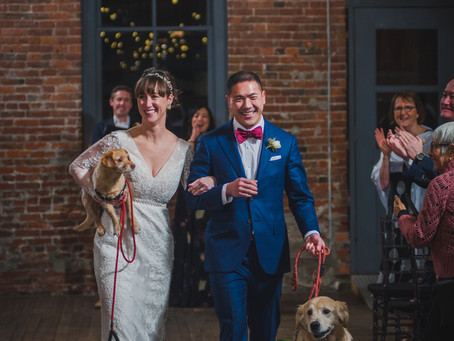 A Doggone Fun Wedding with Tamar & Rob