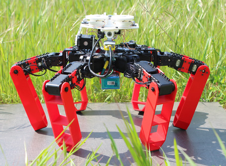 Antbot: the first walking robot to move without GPS