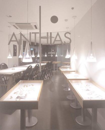ANTHIAS JAPAN