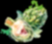 s de salada blog